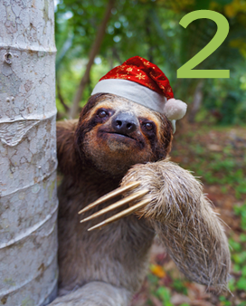 Advent Day 2 at The Learning Zoo!
